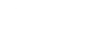 BIRDS AND NATURE Logo
